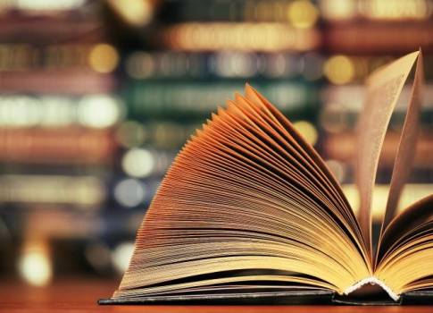 არქივის წიგნები ონლაინ