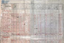 არჩევნების საბოლოო შედეგების ოქმი, 1919 წელი - კვირის დოკუმენტი